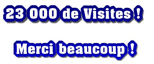 MERCI POUR VOS VISITES !
