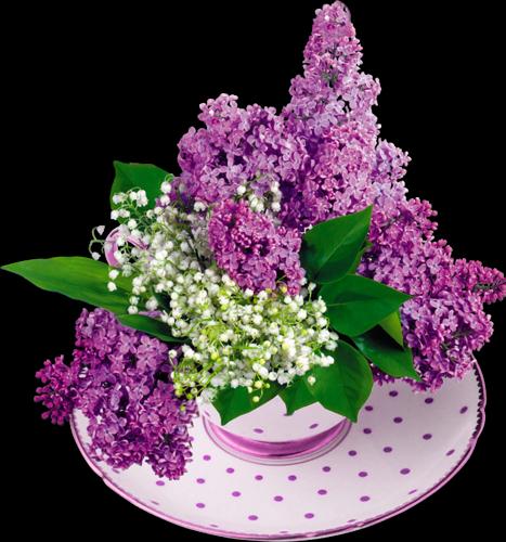 Bon 1er Mai mes amies avec ce kdo pour vous...