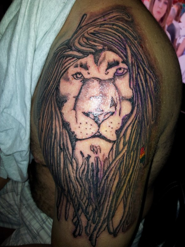 le lion de mon pote stéphan !!!
