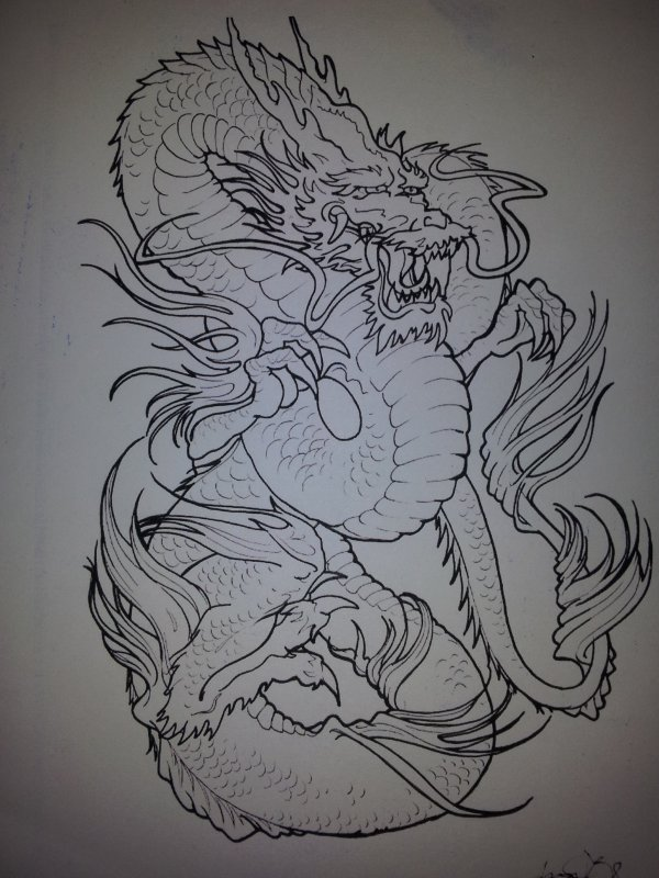 superb dragons chinois