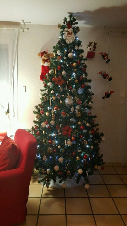 Voter notre sapin !!