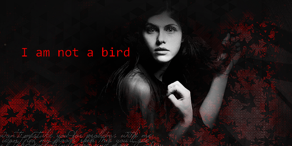 ♦ I am not a bird