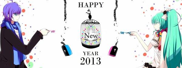 BONNE ANNÉE 2013!! HAPPY NEW YEAR!!