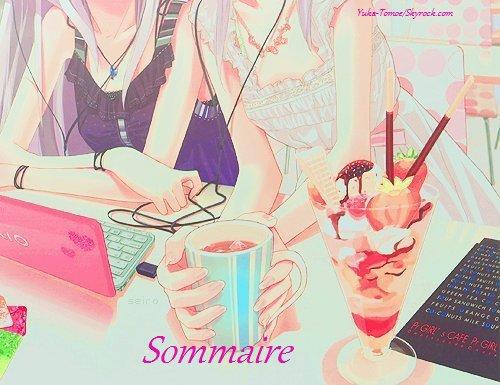 ☆Sommaire du Blog☆