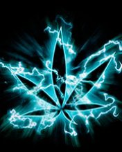 cannabis néon
