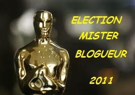 """Officiel sondage """" MISTER BLOGUEUR 2011 """""""