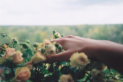 Le regret est un état d'âme. Le remords est un cas de conscience. - Yasmina Khadra