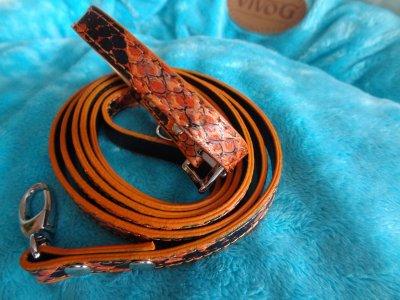 collier + laisse façon Cobra personalisable ou non 17¤ (vendue sans lettre) T 25 ou T30