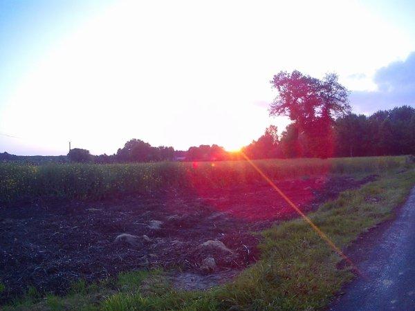 ouaaaa ! c'est sur se magnifique lever de soleil que je vous dit me revoilà ! ça faisais longtemps mais oui , je sais que je parle dans le vide