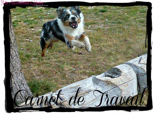 Présentation de ma chienne, Ghalya♥
