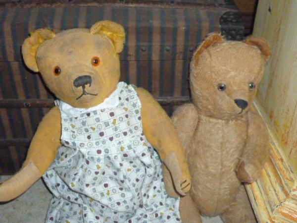 une paire d'ours