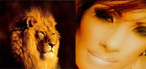 Lovely eyez of Lion