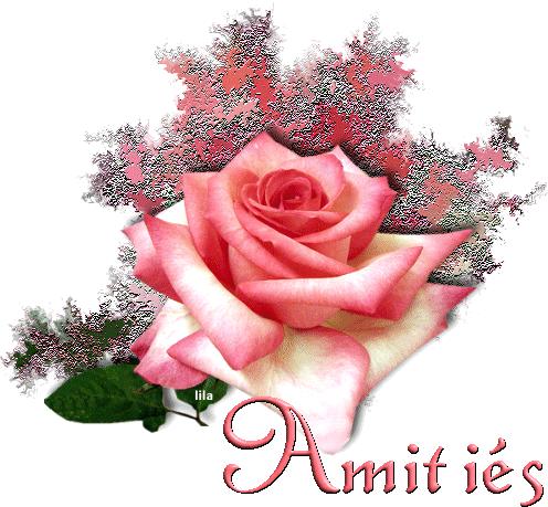 Bon samedi a tous blog de droopyss for Bouquet de fleurs 60 ans