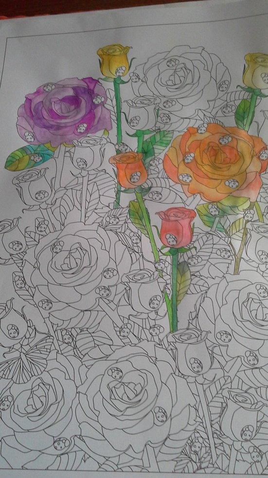 Le nouveau au crayons aquareable