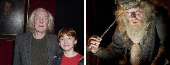 Ron serait Albus Dumbledore