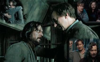 Sirius et Remus seraient secrètement amoureux l'un de l'autre