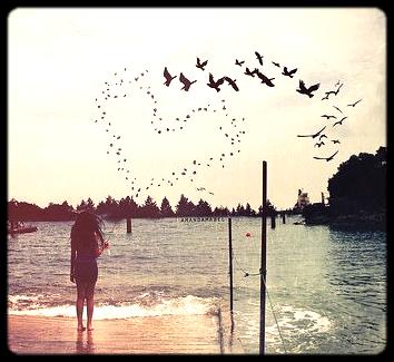 - « Ça m'est égal de passer mon temps tous les jours, Au coin de ta rue dehors sous la pluie qui tombe à verse. Je cherche la fille au sourire fané. Je lui demande si elle veut rester un peu, Et elle sera aimée. Elle sera aimée. » _____________________________________________________________________Traduction de Maroon 5 - She will be loved