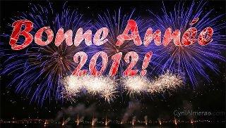une bonne année 2012 mes z'amies
