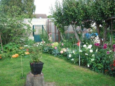 mon jardin les fleurs de jacqueline