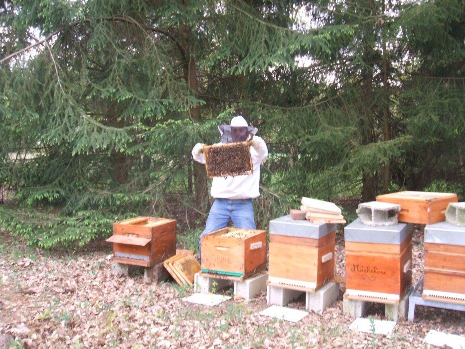 Blog de abeillesoise60