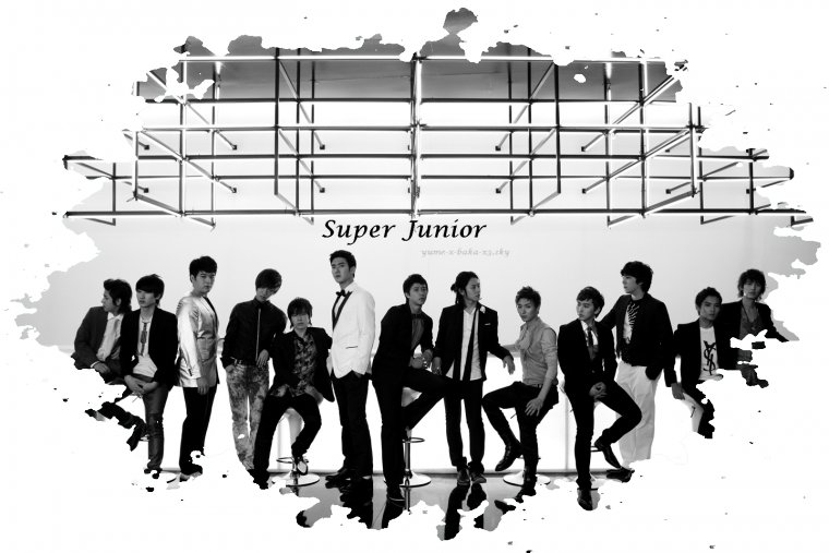 ~ Super Junior ~