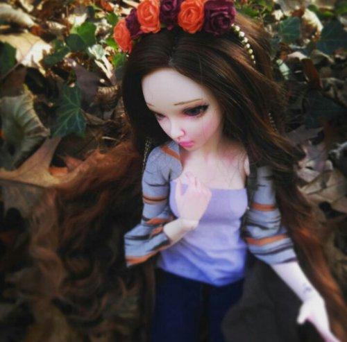 Un automne ensoleillé