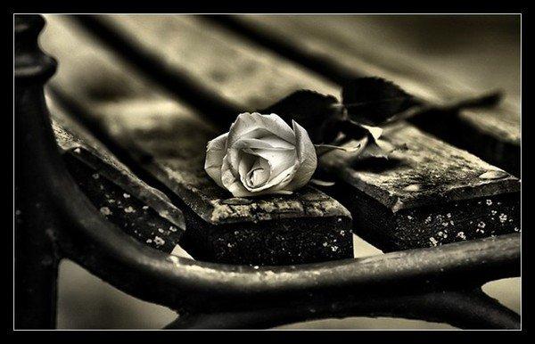 Notre amour est comme le vent, Je ne peux pas le voir mais je le sens...