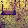 xGalleryPhoto