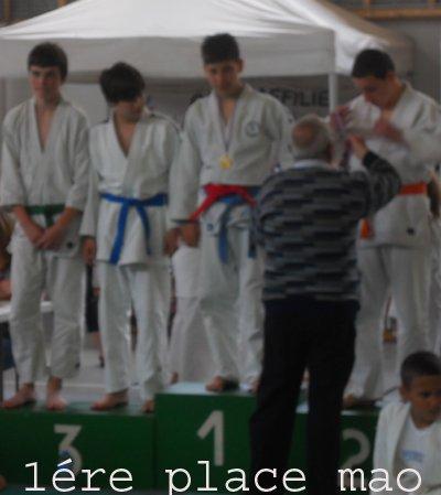 PALMARES  JUDO SAISON 2010/2011