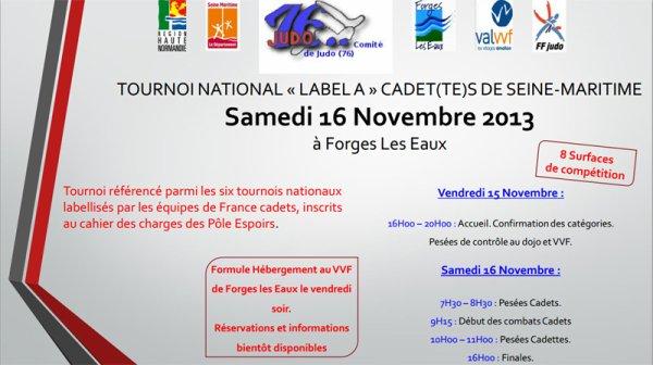 judo national 2013