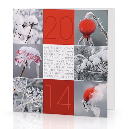 2014*  vous apporte le bonheur et la réussite.. Le succès dans vos projets et l'accomplissement de vos voeux en cette année nouvelle