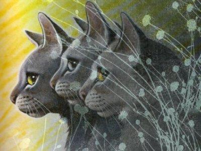 Quel est votre chat préféré?