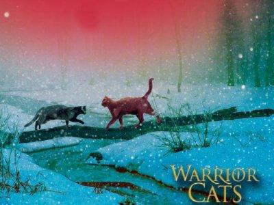 quelques chats...