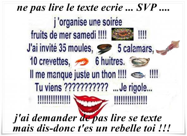 .... L'HUMOUR AVEC TROIS FOIS RIEN .. N° 101 ....