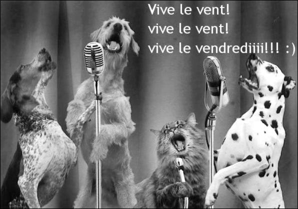 .... L'HUMOUR AVEC TROIS FOIS RIEN .. N° 104 ..