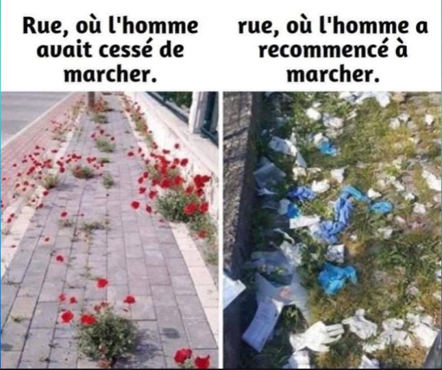 .. L'HUMOUR AVEC TROIS FOIS RIEN .. N° 517 ..