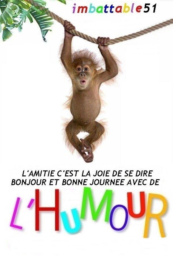 .. L'HUMOUR AVEC TROIS FOIS RIEN .. N° 519 ..