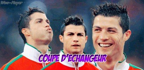 Coupe D'echangeur