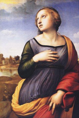 Le 25/11, jour de la Sainte Catherine ...