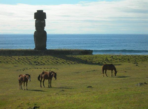 """96e article de FD: """"Le moai de l'ahu ko te riku"""" (1/2)"""