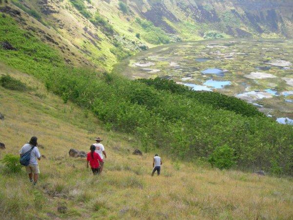 Un village au fonds du Rano Kau ? - 20/11/2005 - (2/4)