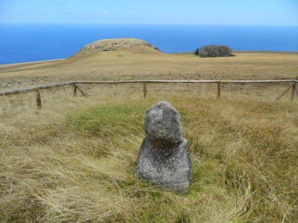 Poike - petit moai (07/12/2013) - 6