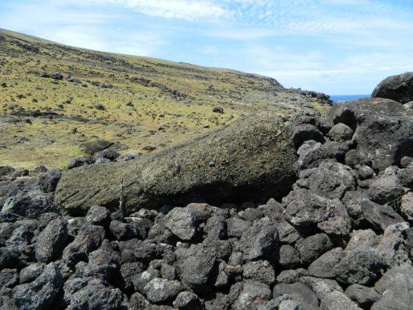 Randonnée de la côte Nord entre l'ahu Te Peu & Anakena - (08/12/2013) - 5