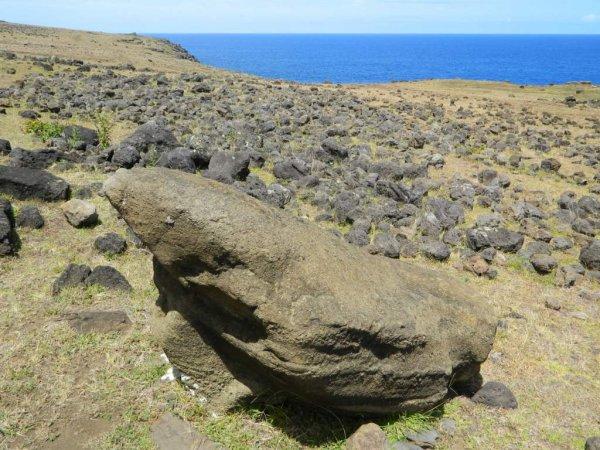 Randonnée de la côte Nord entre l'ahu Te Peu & Anakena - (08/12/2013) - 6
