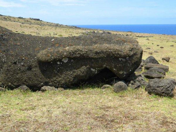 Randonnée de la côte Nord entre l'ahu Te Peu & Anakena - (08/12/2013) - 8