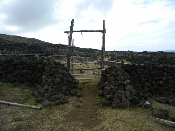 Randonnée de la côte Nord entre l'ahu Te Peu & Anakena - (08/12/2013) - 17