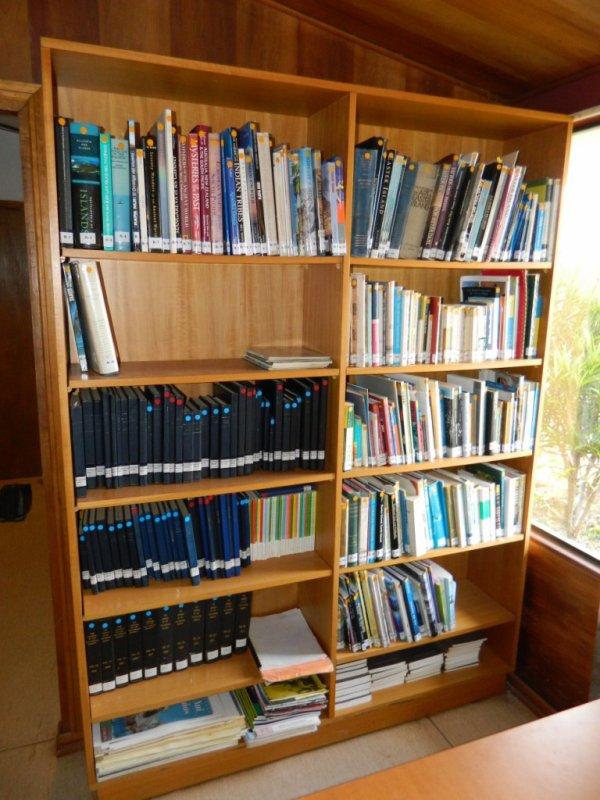 Bibliothèque Mulloy (04/12/2013) - 1