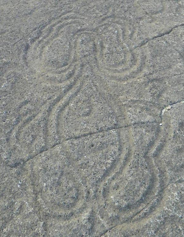 Pétroglyphes - poulpe ? (06/12/2013)