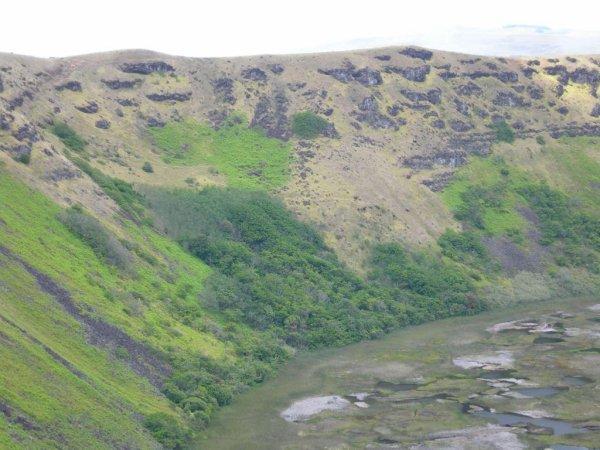 Pierre à pétroglyphes au fond du Rano Kau (15/11/2005) - 1