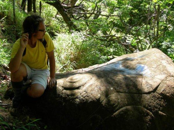 Pierre à pétroglyphes au fond du Rano Kau (15/11/2005 & 20/11/2015 pour les 2 dernières photos) - 2